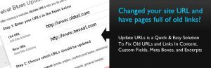 Velvet Blues Update URLs: Updates all urls and content links in your website.